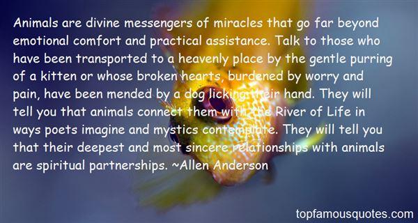 Allen Anderson Quotes