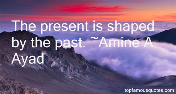 Amine A. Ayad Quotes