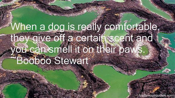 Booboo Stewart Quotes
