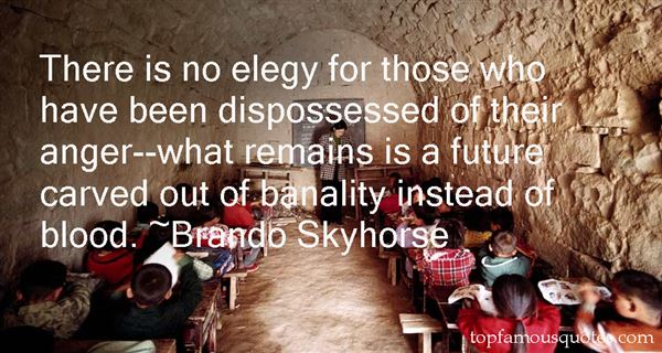 Brando Skyhorse Quotes