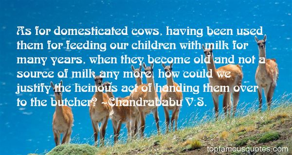 Chandrababu V.S. Quotes