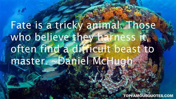 Daniel McHugh Quotes