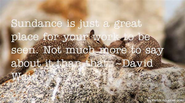 David Wain Quotes