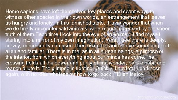 Ellen Meloy Quotes