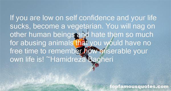 Hamidreza Bagheri Quotes