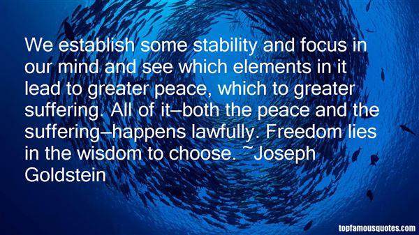 Joseph Goldstein Quotes