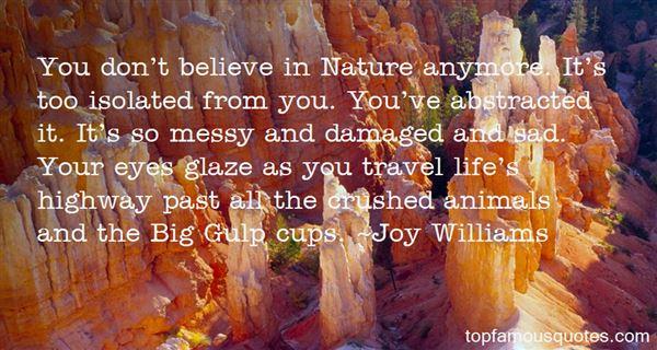Joy Williams Quotes