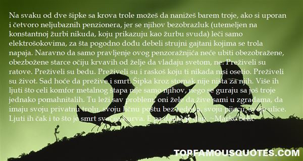 Marko Šelić Quotes