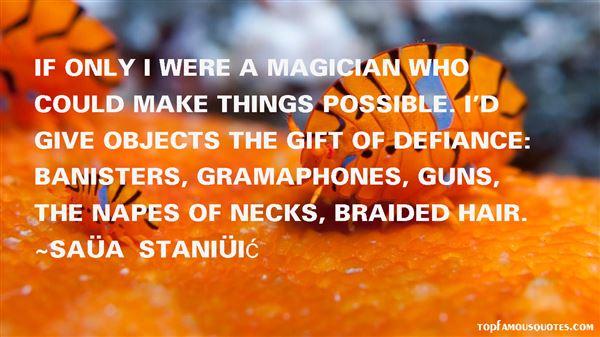 Saša Stanišić Quotes