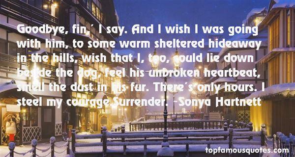 Sonya Hartnett Quotes