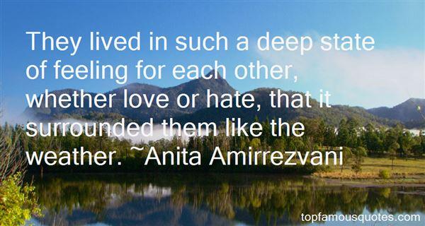 Anita Amirrezvani Quotes