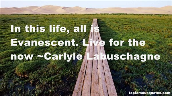 Carlyle Labuschagne Quotes