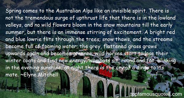 Elyne Mitchell Quotes