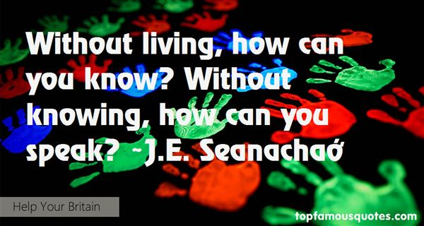 J.E. Seanachaí Quotes