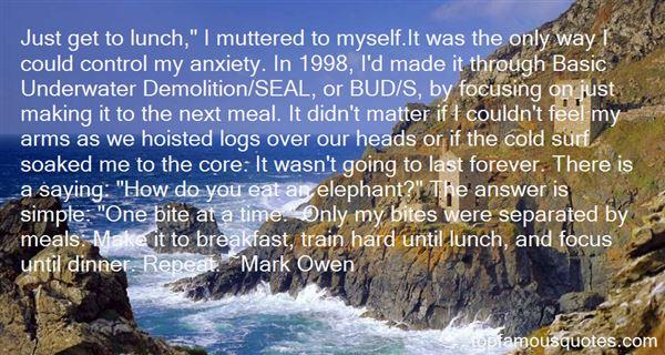 Mark Owen Quotes