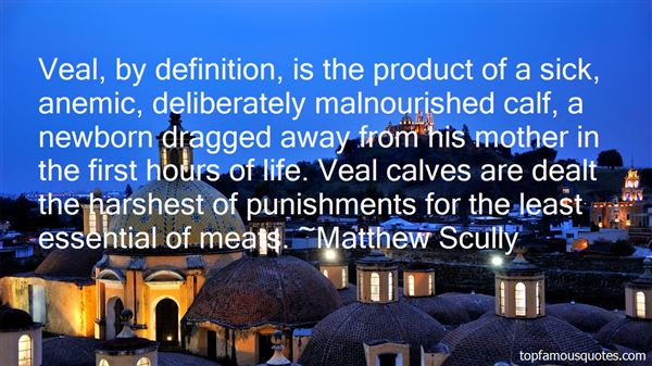 Matthew Scully Quotes