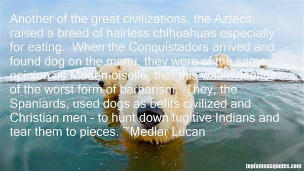 Medlar Lucan Quotes