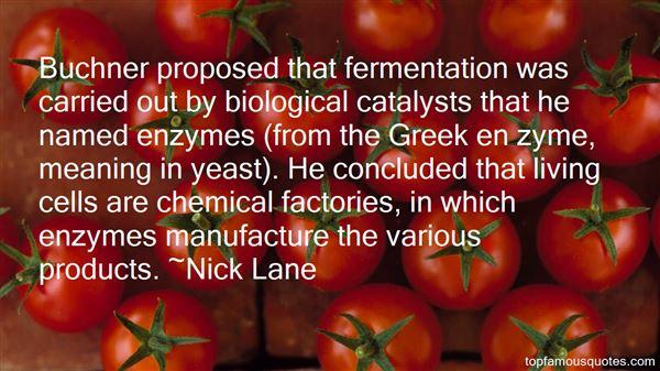 Nick Lane Quotes