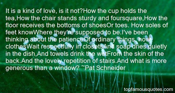 Pat Schneider Quotes