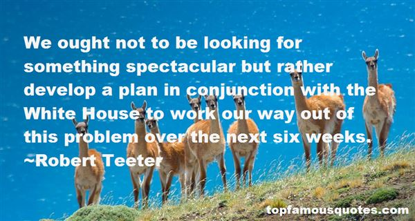 Robert Teeter Quotes