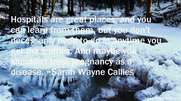 Sarah Wayne Callies Quotes