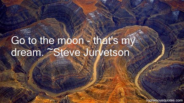 Steve Jurvetson Quotes