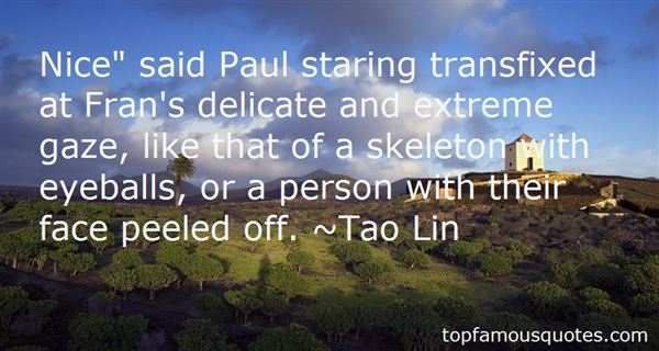 Tao Lin Quotes