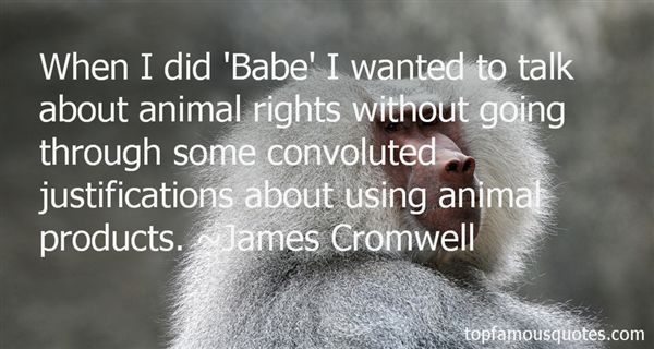Quotes About Animal Rights