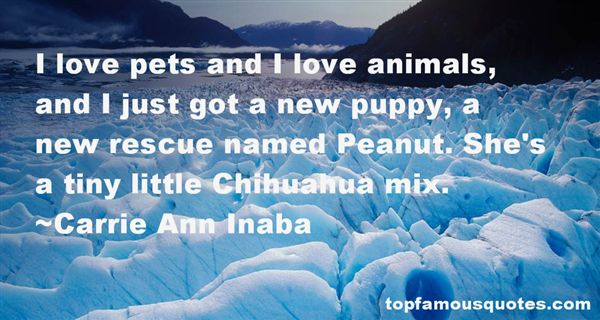 Animal Rescue Quotes: best 6 famous quotes about Animal Rescue