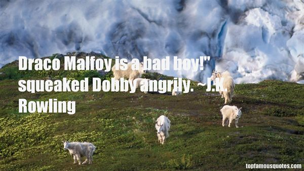 Quotes About Dobby