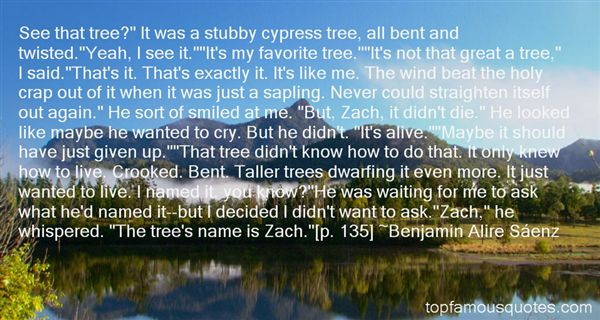 Quotes About Twisted Trees