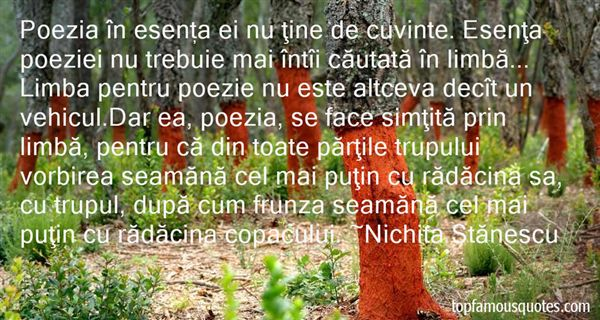 Quotes About Poezie