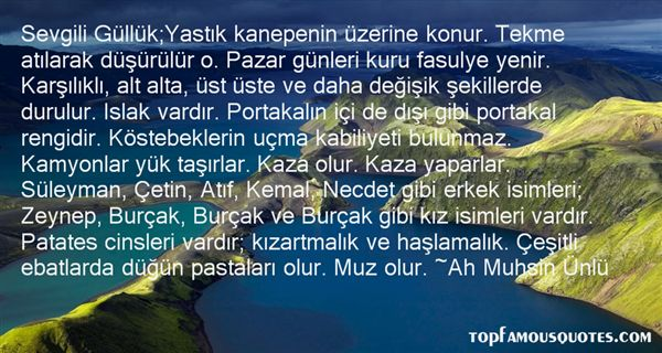 Quotes About Portakal