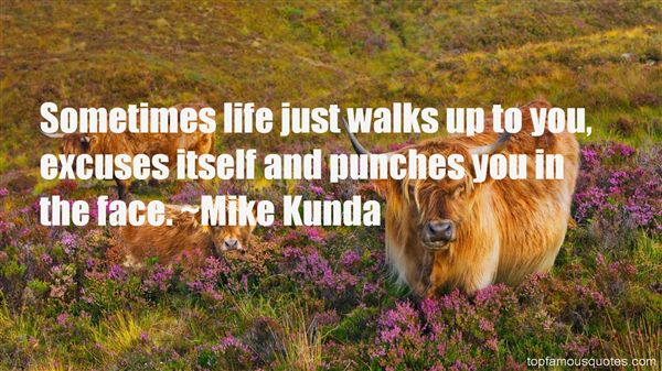 Quotes About Punches