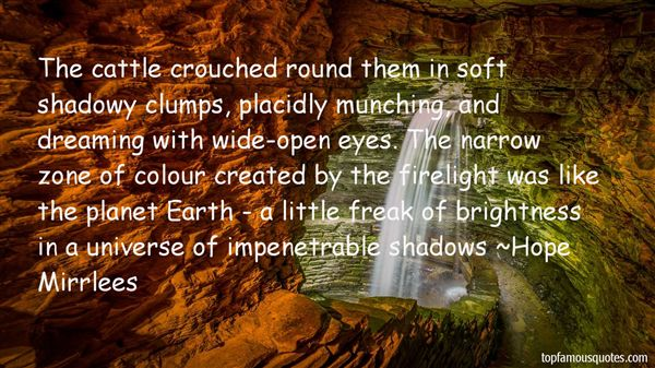 Quotes About Shadowy
