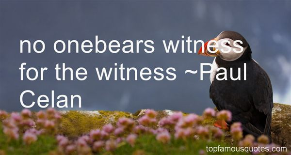 Quotes About Witness