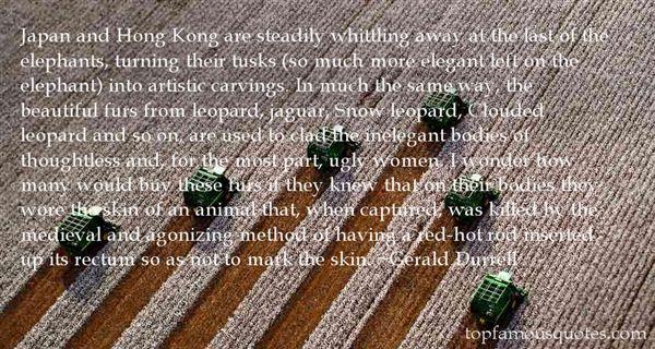 Quotes About Jaguar Animal