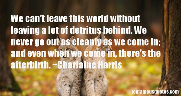 Quotes About Detritus