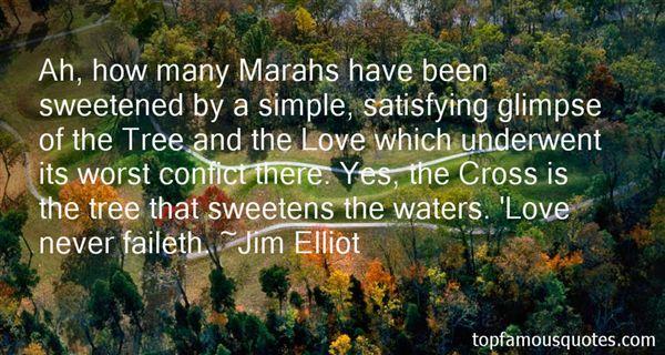 Quotes About Confict