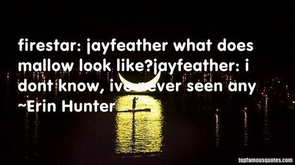 Quotes About Jayfeather