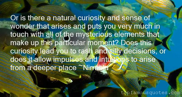 Quotes About Wonder And Curiosity