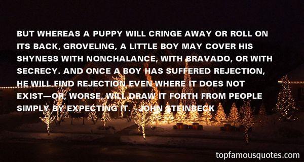 Quotes About Bravado