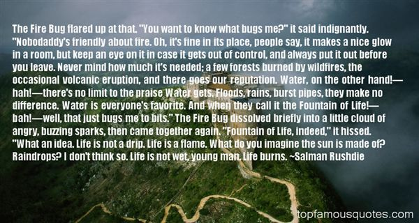 Quotes About Bugs