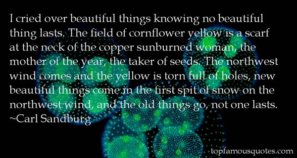Quotes About Copper Sun