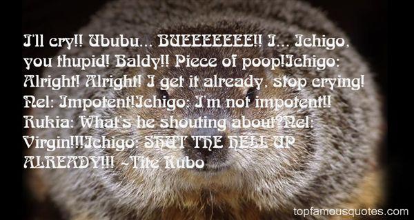 Quotes About Ichigo Rukia