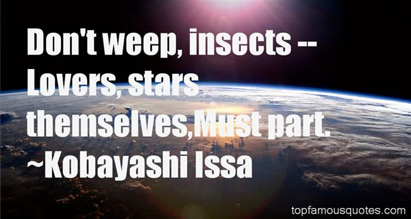 Quotes About Insect