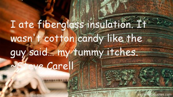 Quotes About Insulation