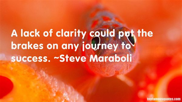 Quotes About Journey To Success