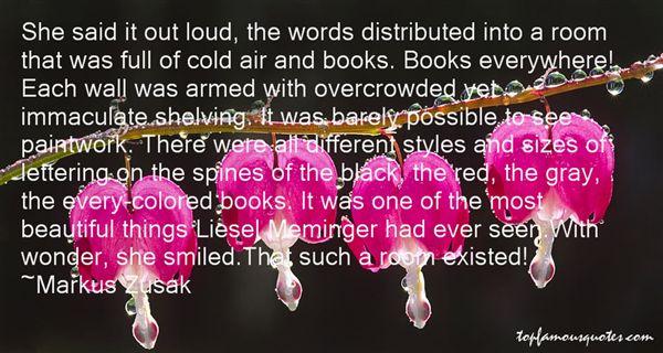 Quotes About Liesel Meminger