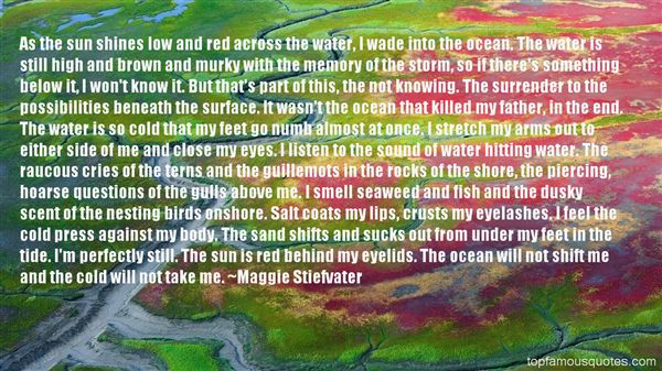 Quotes About Murky Water